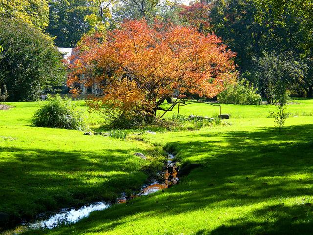 Ide de jardin fleuri julia brechler with ide de jardin for Jardin japonais yvelines