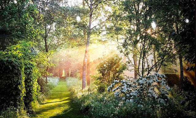 Jardin anglais nature tout for Circuit jardins anglais