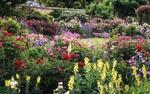 Diaporama : Jardins anglais