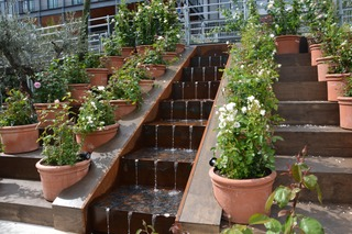 rosiers-cascade
