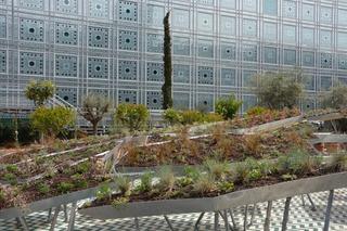 Institut du Monde Arabe, jardin éphémère