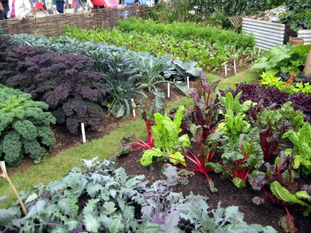 L gumes les bons voisins for Les compagnons des jardins