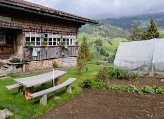 Potager en montagne : culture, variétés de légumes adaptées