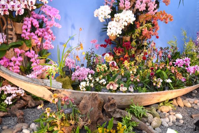 RHS Chelsea Flower Show 2016 (RHS Chelsea Flower Show 2016)