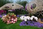 Floralies de Gand 2016