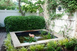 Petit bassin avec fontaine