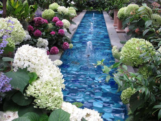 Bassin bordé d'hortensias (L'eau au jardin)