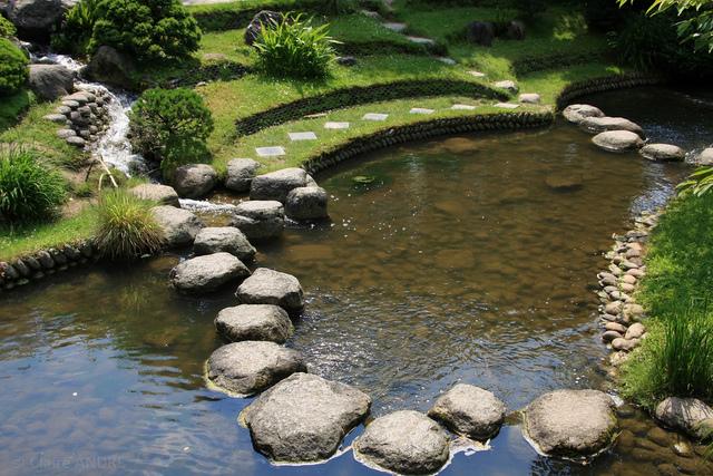 Harmonie des courbes pour cette pièce d'eau (L'eau au jardin)