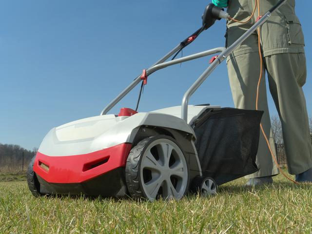 Scarificateur : le bon outil pour entretenir la pelouse