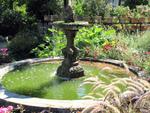 Diaporama : L'eau au jardin