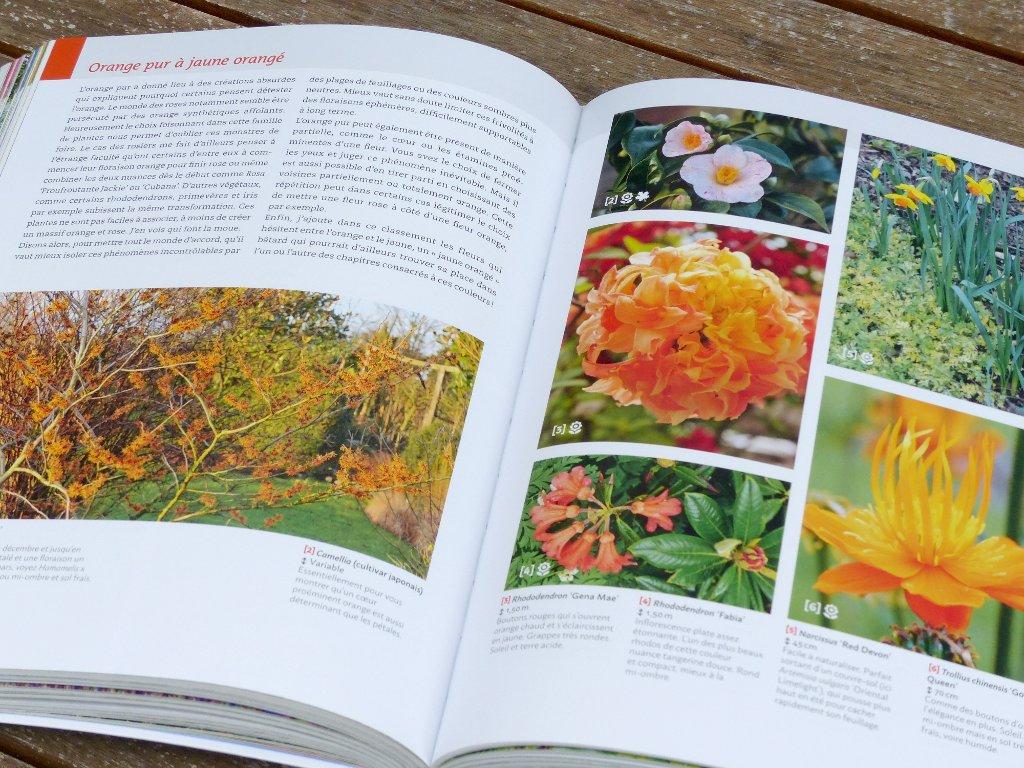 Guide de la couleur au jardin livre de francis peeters for Au jardin des couleurs