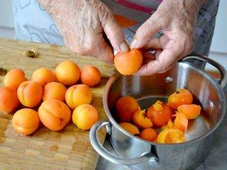 Dénoyautage des abricots / I.G.