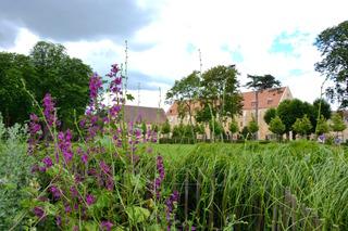 Abbaye de Royaumont, vue depuis le potager / Clémentine Desfemmes