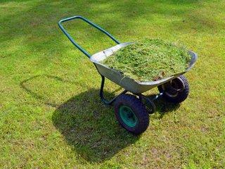 Brouette à 2 roues remplie d'herbe