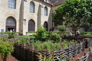 Jardin des 9 carrés, Abbaye de Royaumont / Clémentine Desfemmes
