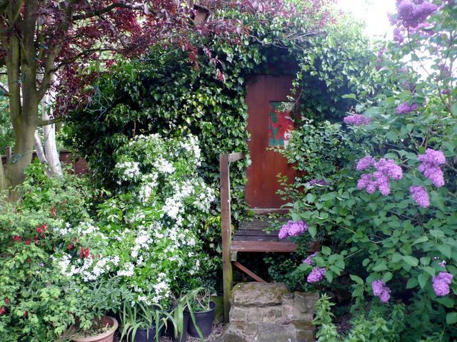 Cabane de jardin cachée dans la végétation