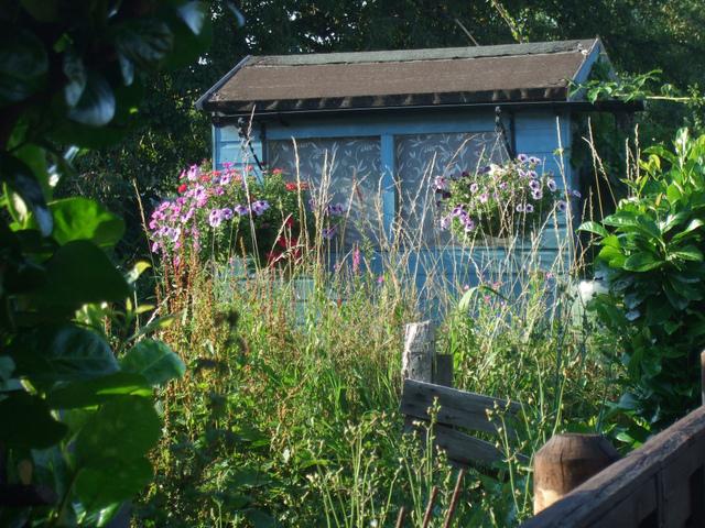 Cabane v g tation tout - La cabane au fond du jardin laurent gerra ...