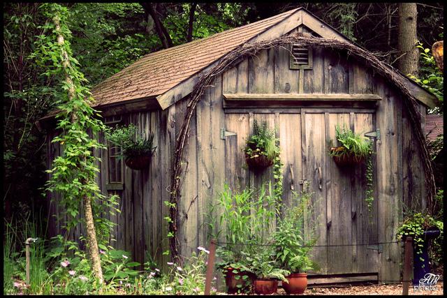 cabane en bois dans un coin ombrag cabanes de jardin. Black Bedroom Furniture Sets. Home Design Ideas