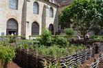 Abbaye de Royaumont : découvrez le nouveau jardin des 9 carrés
