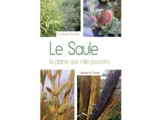 Le Saule / NC