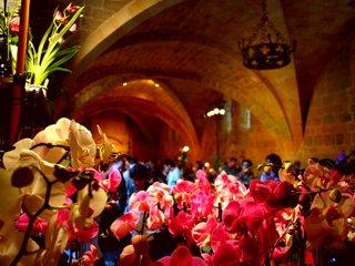 Orchidées à Fontfroide : sous les voutes / D.R.