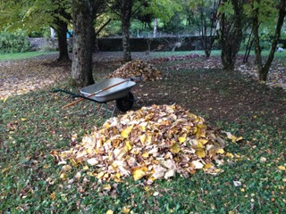Ramassage de feuilles mortes au râteau