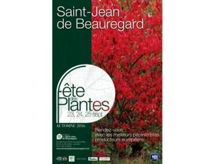 Fête des Plantes, Saint Jean de Beauregard / /