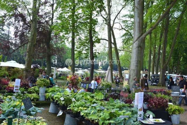 Journ es des plantes de chantilly 14 16 octobre 2016 - Journee des plantes chantilly ...