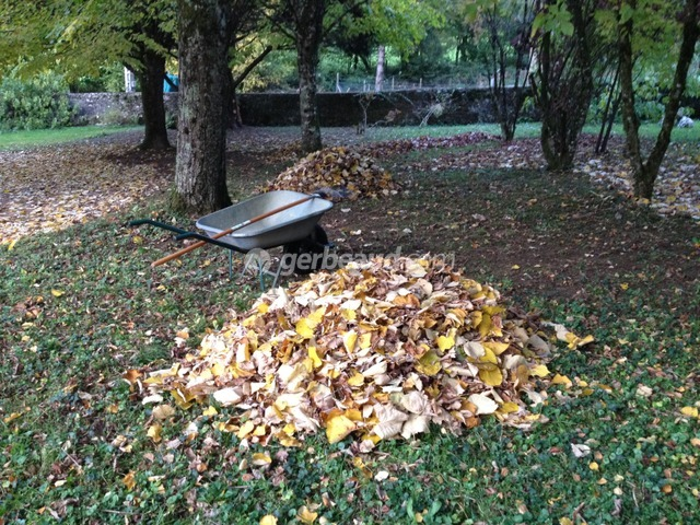 Recycler les déchets du jardin : feuilles, tontes, branches...