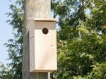 Nichoirs pour les oiseaux du jardin