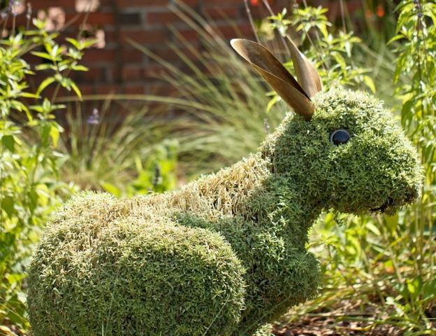 Lapin en sculpture végétale (Mosaïculture et sculptures végétales)