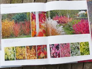 jardins d 39 hiver une saison r invent e livre de c dric pollet. Black Bedroom Furniture Sets. Home Design Ideas