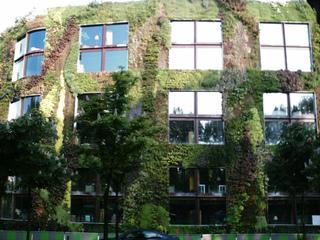 Façade végétalisée du musée du Quai Branly, Paris