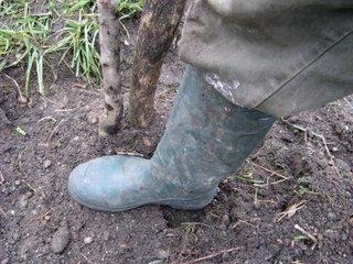 Tassement de la terre au pied