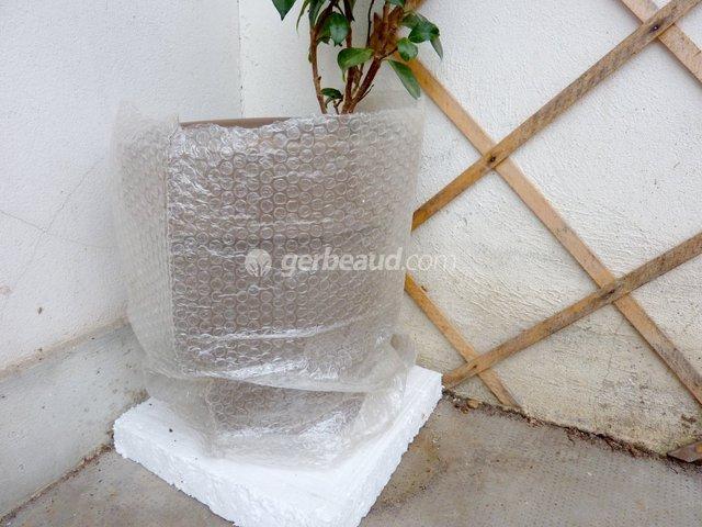 Protégez vos plantes du froid