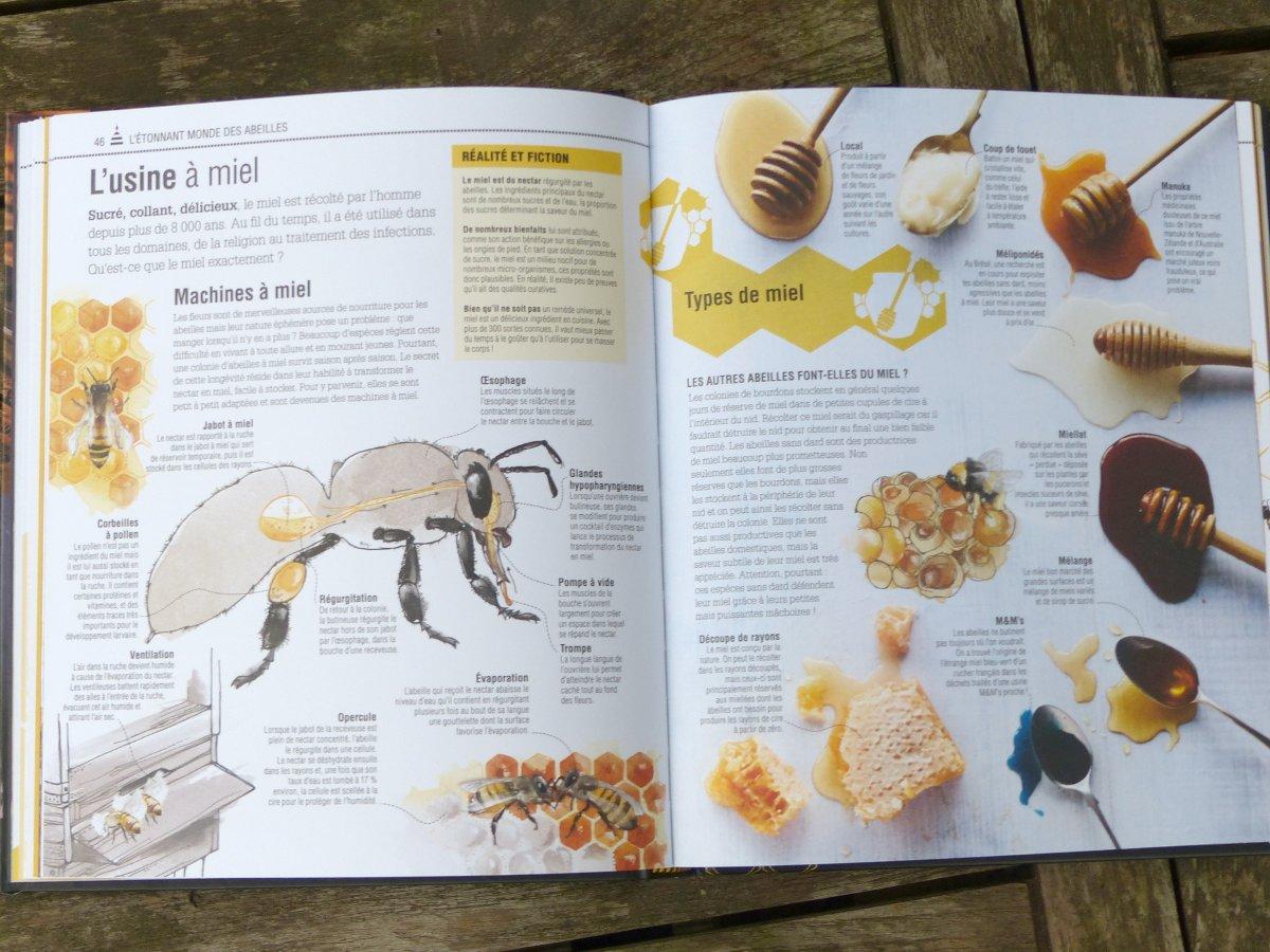 petit larousse des abeilles et de l 39 apiculture livre de collectif. Black Bedroom Furniture Sets. Home Design Ideas