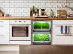 Le kitchen garden, ou potager de cuisine, c'est tendance !