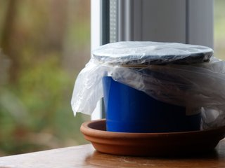 Pot recouvert d'un sac plastique