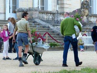Transport des plantes en brouette / X.G.