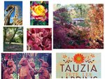 Tauzia fête les jardins : résultats concours photo