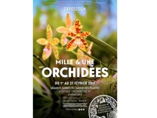 Affiche exposition 1001 orchidées 2017 / /