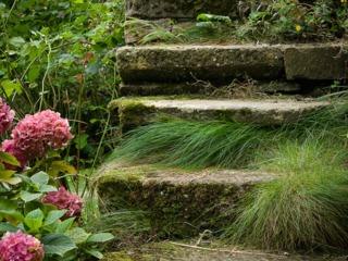 Viel escalier en pierres