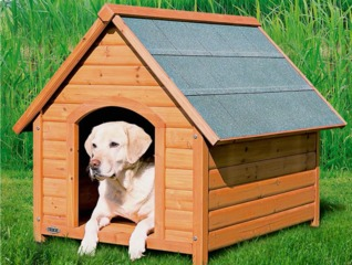 Niche pour chien, style chalet, en bois