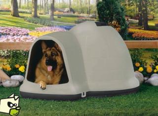 Niche Indigo pour chien en plastique, forme igloo