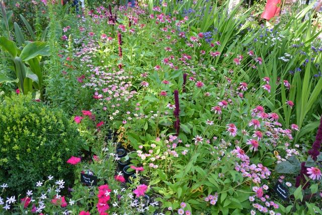 Ambiance champ tre chaumont sur loire festival des for Festival des jardins 2016