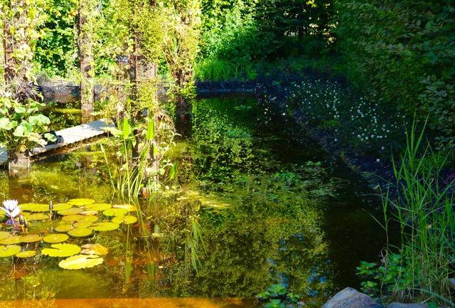 Ombre et lumière - Chaumont sur Loire (Festival des Jardins de ...