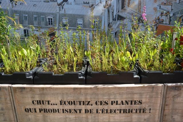 Plantes sur les toits chaumont sur loire festival des for Festival des jardins 2016