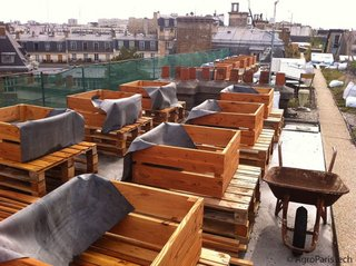 Préparation de bacs de culture sur un toit (AgroParisTech)
