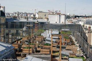 Jardin expérimental sur les toits - AgroParisTech