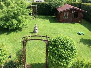 Robot tondeuse au milieu de la pelouse
